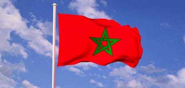 رقم مكافحة الابتزاز الالكتروني في المغرب – الابلاغ عن الابتزاز من المغرب